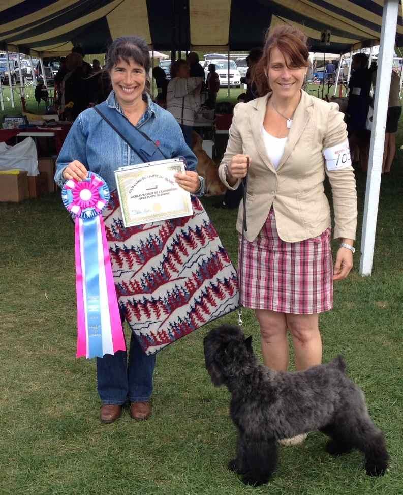 Adèle, de l'élevage Galheights, remporte le prix du meilleur chiot de la compétition.