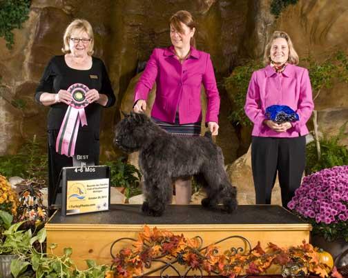 Adèle, best puppy à la spécialité régionale US