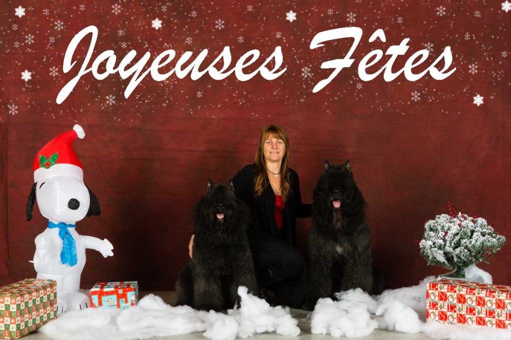 JoyeusesFetes2013